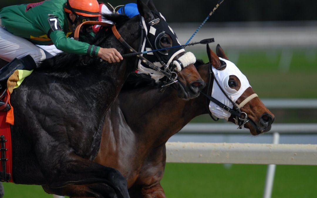 Paardenrace drankspel